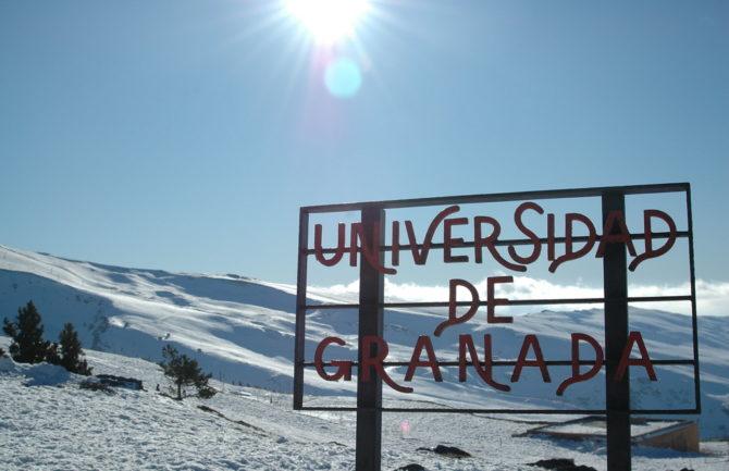 Bateria Social Incluyente: Aproximaciones a los nuevos servicios sociales estudiantiles de la universidad granadina del siglo XXI hacia la construcción de un nuevo tejido económico español