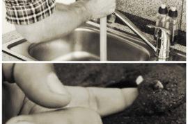 ¡Practica la fontanería y busca conchas!